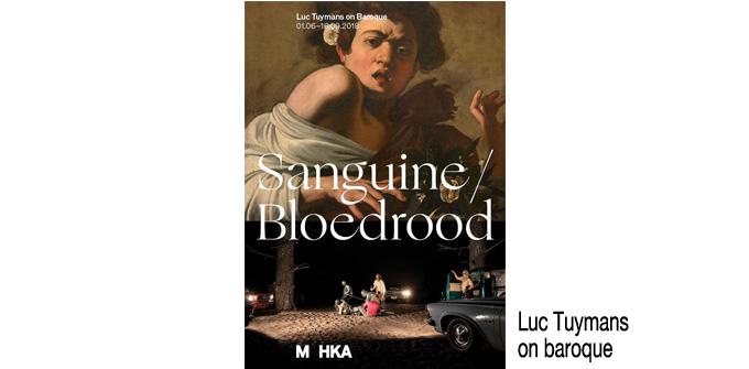 SANGUINE/BLOEDROOD Luc Tuymans on baroque - M HKA, Antwerpen