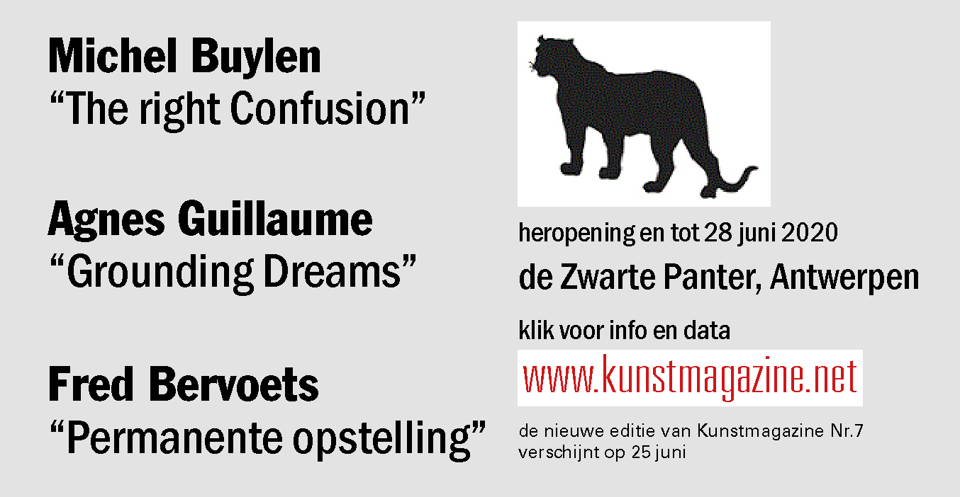 AGNES GUILLAUME - Grounding Dreams